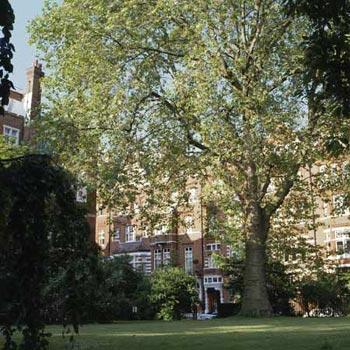 Eleven Cadogan Gardens Hotel Sloane Square London Sw3